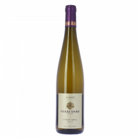 Pinot gris sol Calcaire